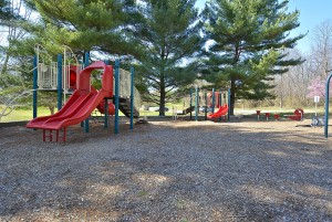 Print_Amenity-Ednor Park Playground