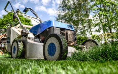 Keep Your Property in Top Shape